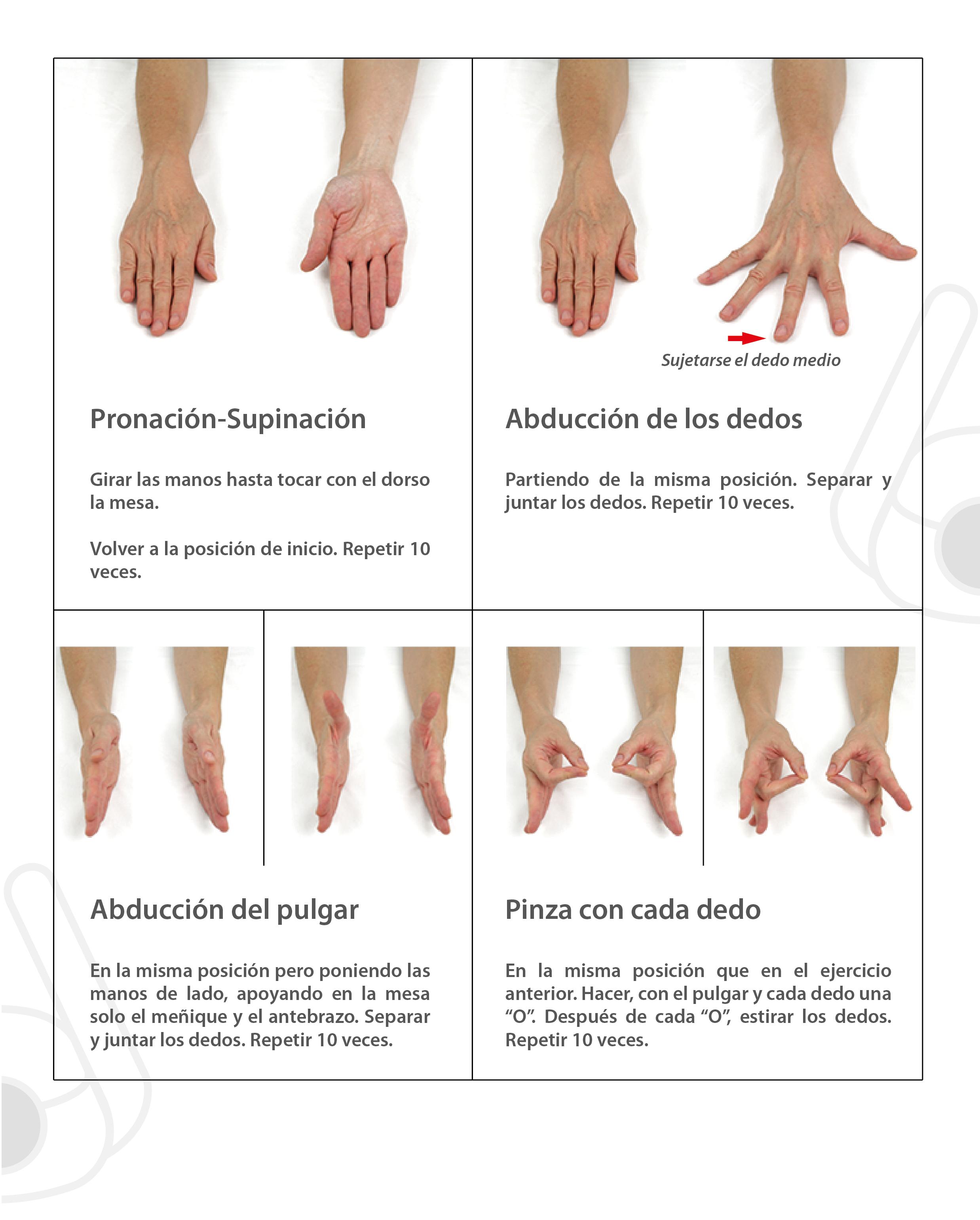 articulaciones de la mano y dedos